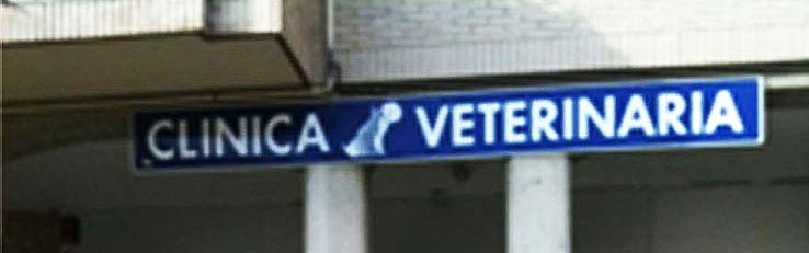 Clinica veterinaria Pamplona